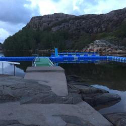 Johannesvik 2017
